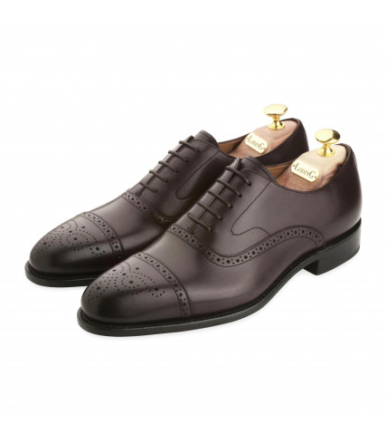 Richelieu Brogue à bout fleuri Newton 318 - Marron